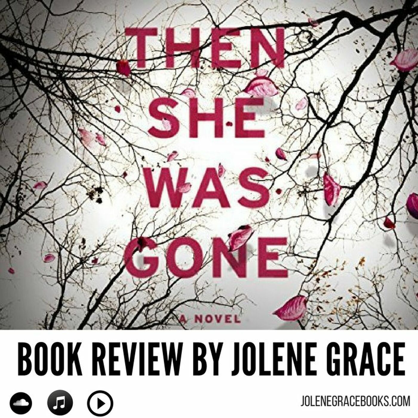 Then She Was Gone Episode Book Review