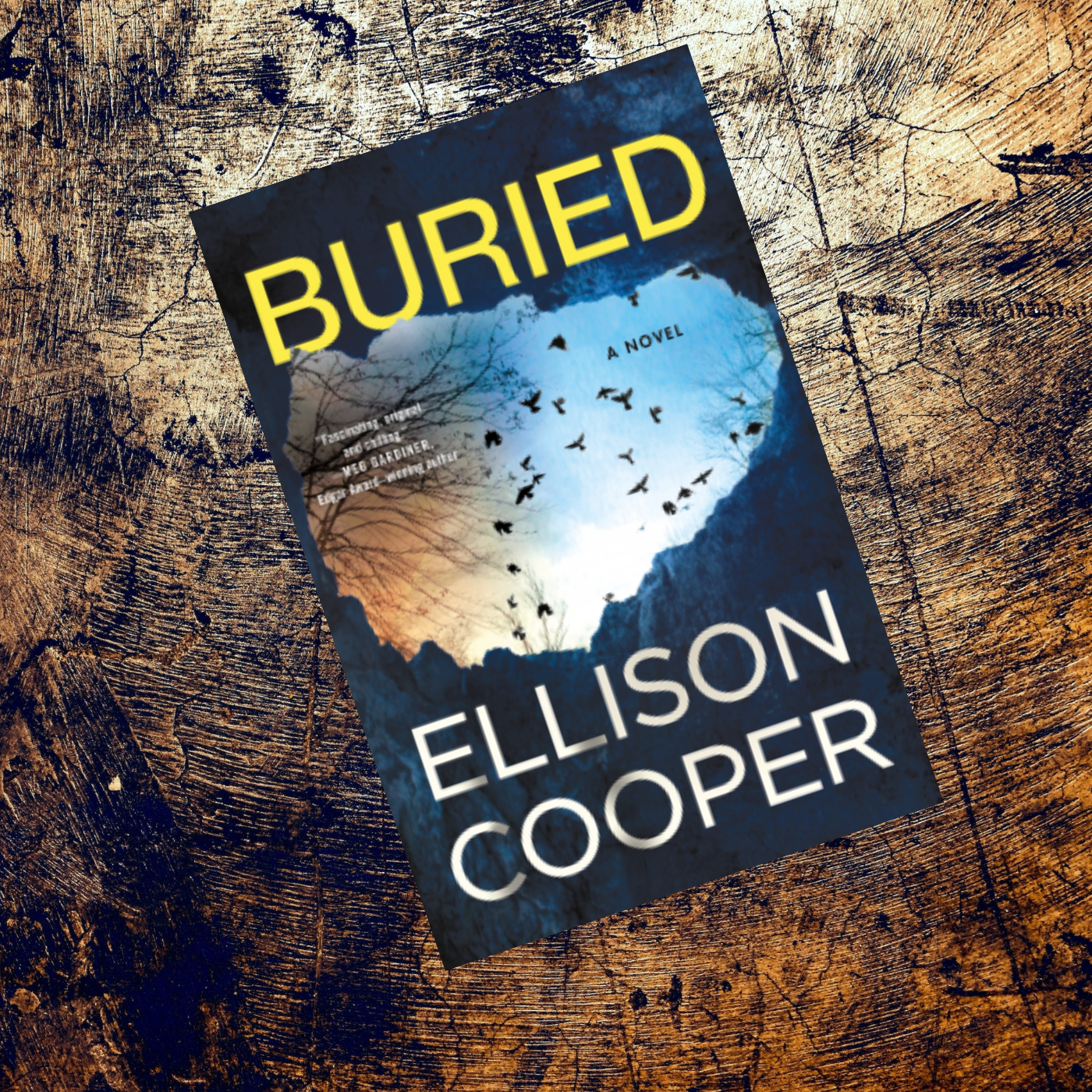 Buried by Ellison Cooper Is A Bone Chilling Thriller